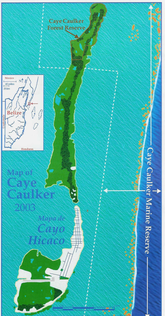 Map of Caye Caulker with inset of Belize